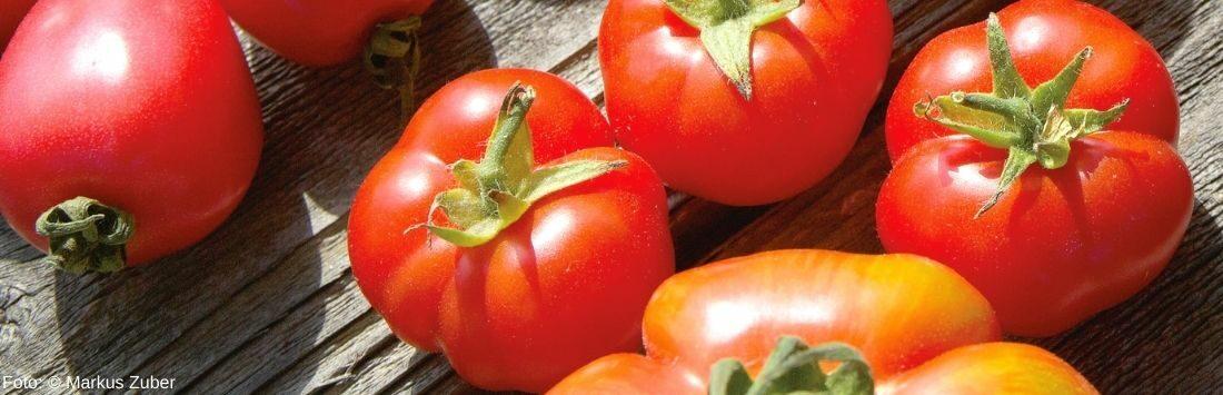Tomaten am Tisch