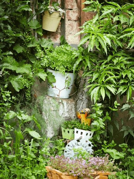 vertikaler Kräutergarten
