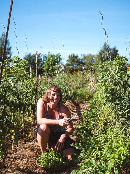 Frau schneidet Basilikum in ihrer Mischkultur