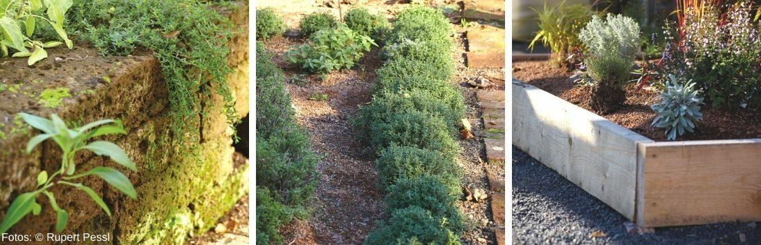verschiedene Kräutergärten