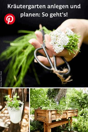 Hand, die Kräuter hält, Kräutertopf und Kräuterhochbeet