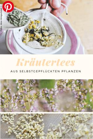 Kräutertees aus selbstgepflückten Pflanzen
