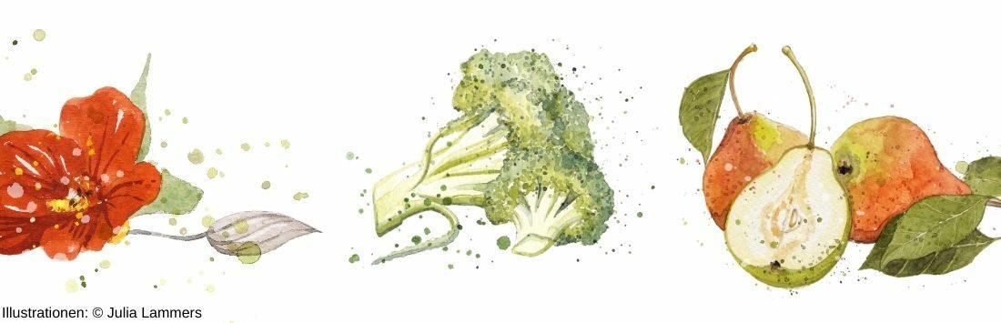 Illustrationen von Obst und Gemüse