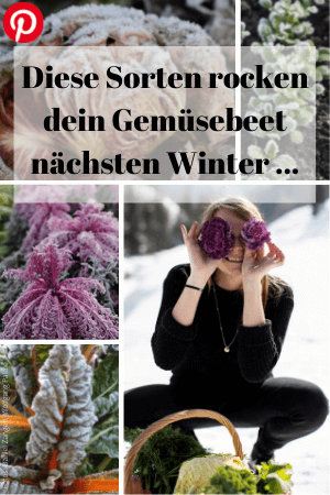 Gesundes Wintergemüse