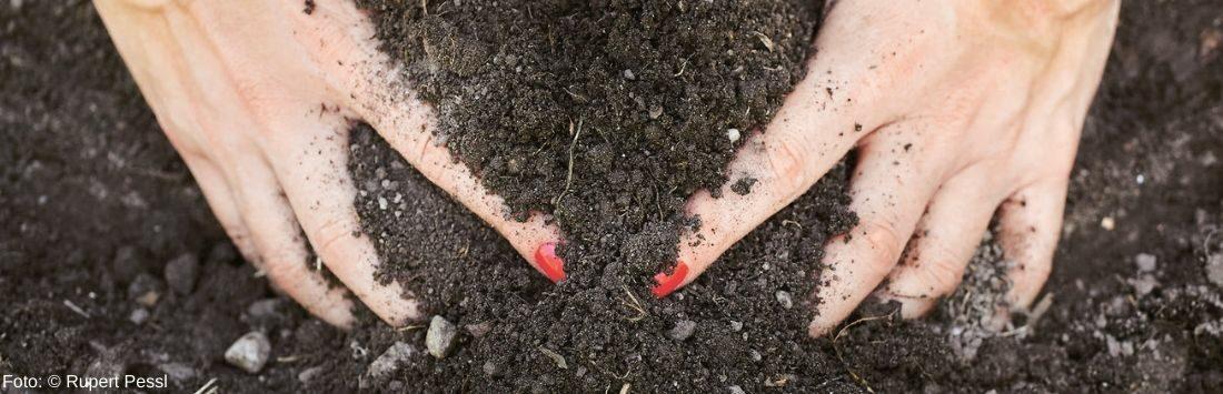 Hände in der Erde