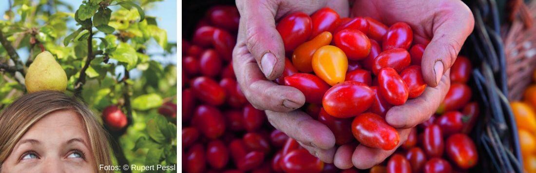 Frau mit Birne und Tomaten