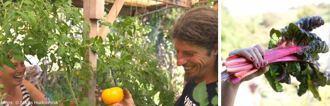 Sigrid Drage mit ihrem Mann im Garten und geernteter Rhabarber