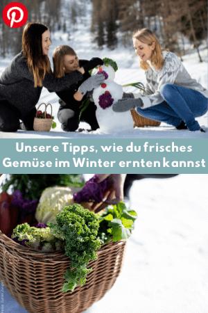Unsere Tipps, wie du frisches Gemüse im Winter ernten kannst