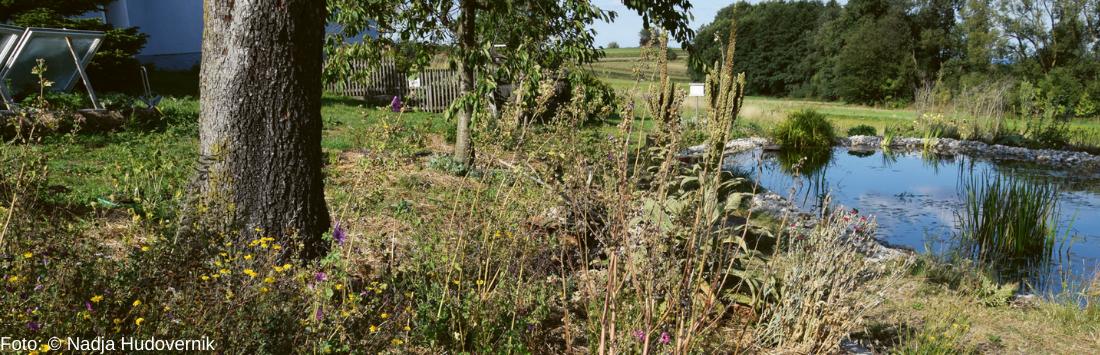 Permakultur Landwirtschaft