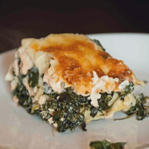 Giersch-Lachs-Lasagne