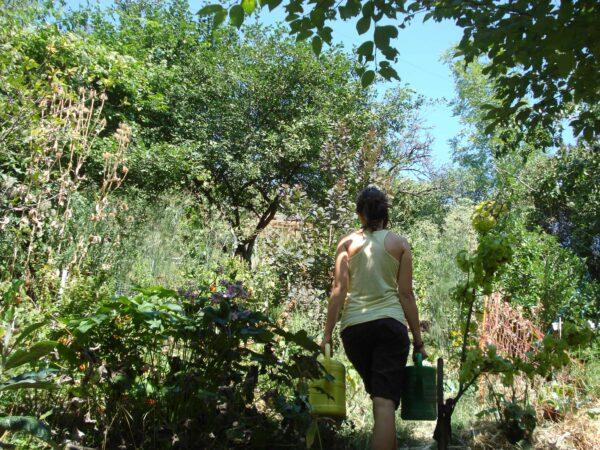 Permakulturelles gärtnern bringt dich und deinen Garten näher zusammen - versprochen! Foto: Sigrid Drage