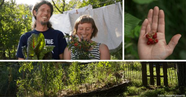 Werde zum entspannten Gärtner und zur Permakulturistin und erlebe naturnahes Gärtnern! Sigrid Drage und Andreas Voglgruber zeigen dir wie! Fotos: Nadja Hudovernik