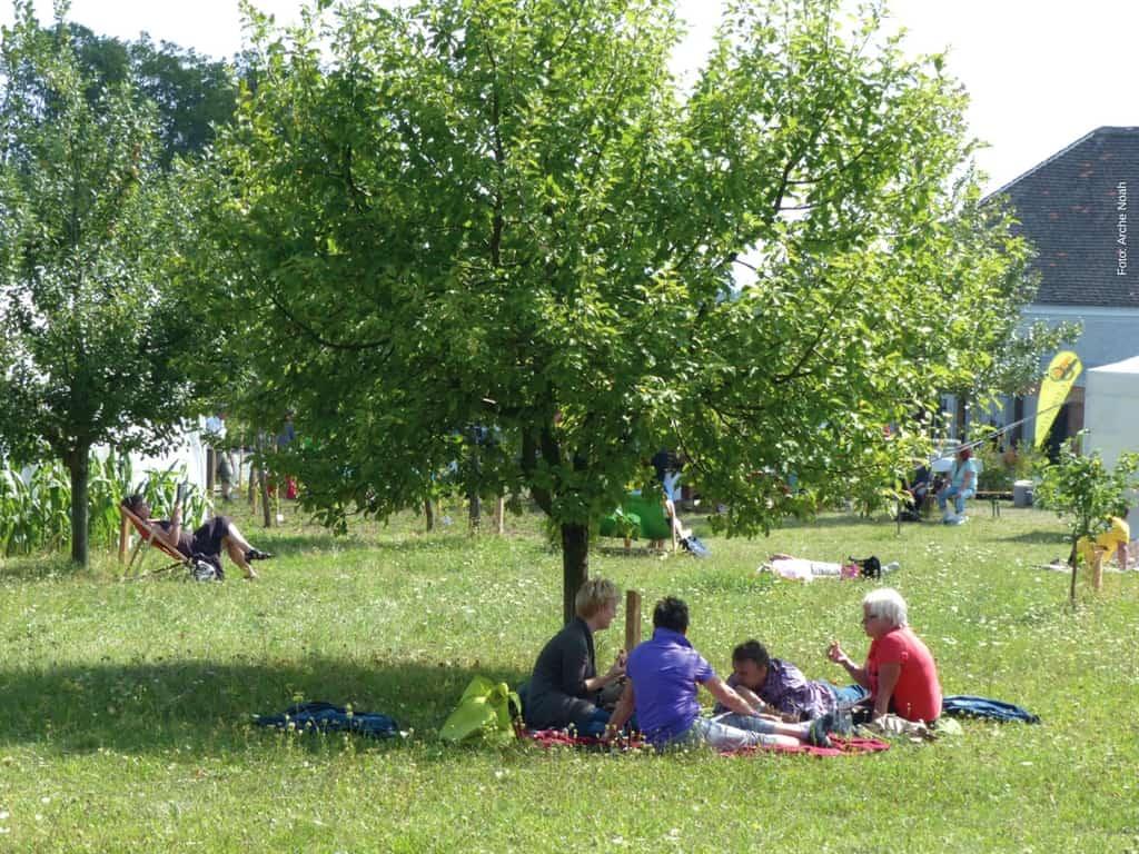 Von der Versorgung mit Obst bis zur Erholung erfüllt ein Obstgarten viele Funktionen. Foto: Arche Noah
