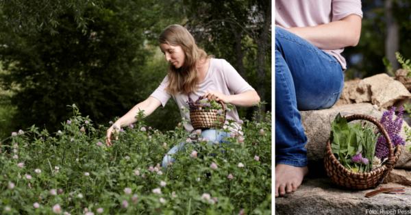 Komm mit Gerda Holzmann auf ihre Kräuterwanderung und erlebe die Kraft der grünen Alleskönner! Foto: Rupert Pessl