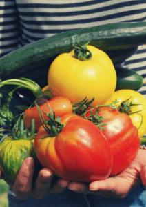 Welches wird dein Lieblingserlebnis? Ein Gartenworkshop oder doch ein Backkurs - entscheide du! Foto: Pixabay