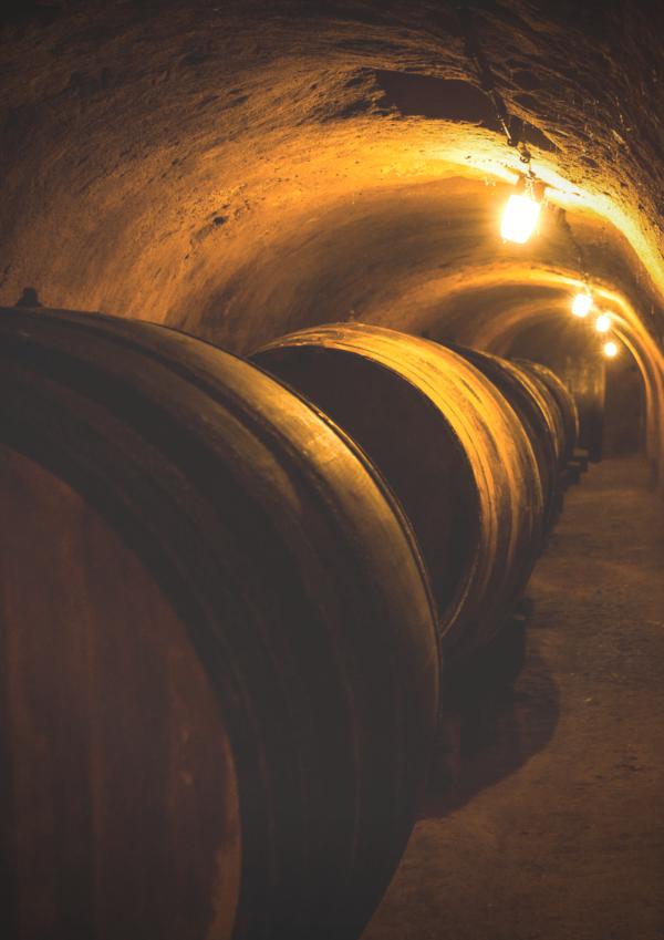 Wo wurde Wein früher gelagert? In den typischen Weinviertler Kellern! Mit Sonja Schmid besichtigt ihr eine historische Kellerröhre, besonderes Flair inklusive! Foto: fotodesign Dieter Schewig
