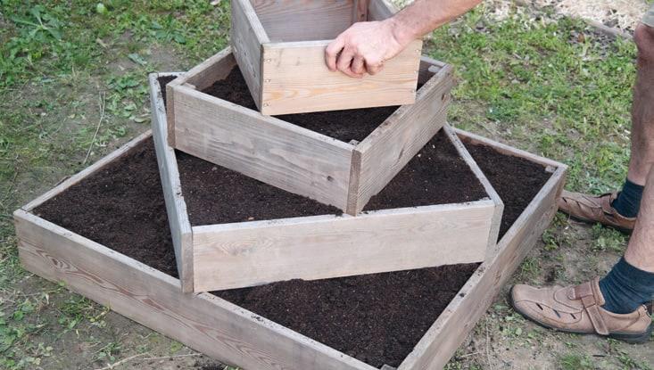 6. Gib wiederum Erde auf die Pflanzkartoffeln und in den dritten Rahmen und bepflanze diesen genauso wie den zweiten.