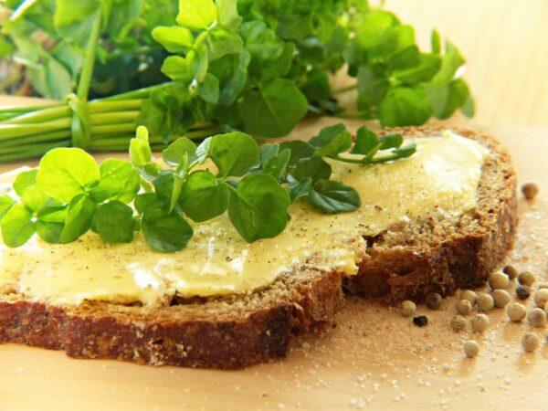 Ihr bereitet mit Tina Ganser verschiedene Aufstriche zu. Sind die Brote aus dem Ofen, geht's ans Probieren – lasst es euch schmecken! Foto: Pixabay