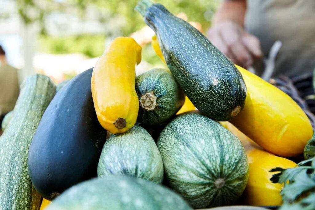 Zucchinis vom Balkongarten