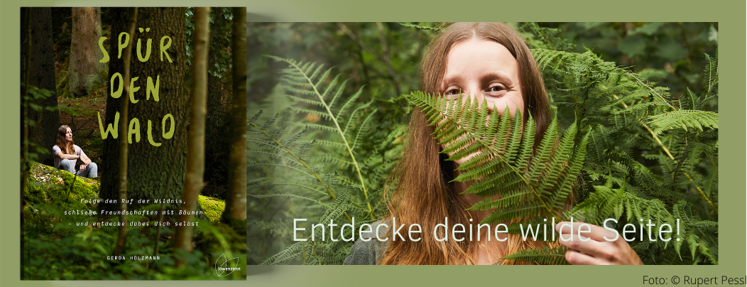 Hinaus in den Wald, Frischluft und Grünkraft tanken und die Wildnis entdecken!