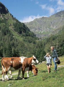 Christina und Magdalena mit Kühen auf der Alm