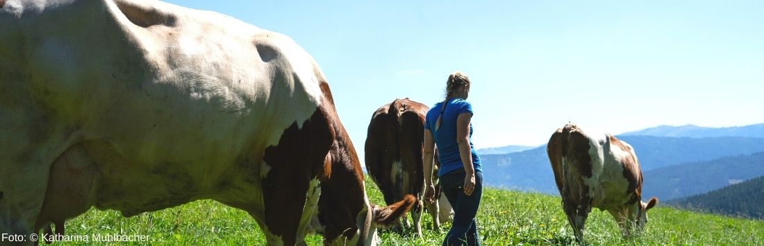 Christina Bauer auf der Alm mit Kühen