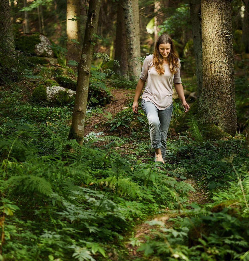Unterwegs im Wald - zum nächsten Unterschlupf