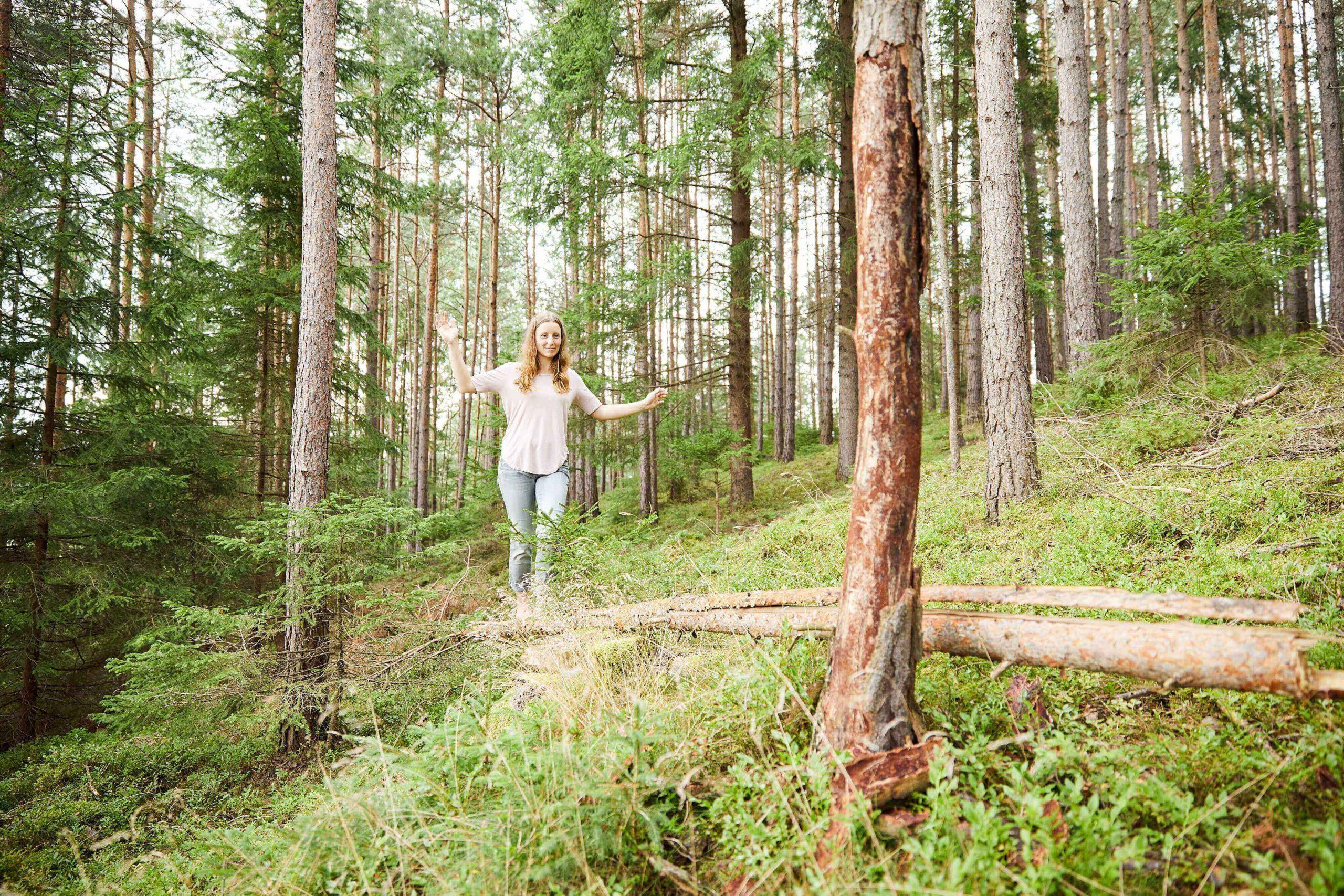 Fühl dich wie zuhause im Wald!