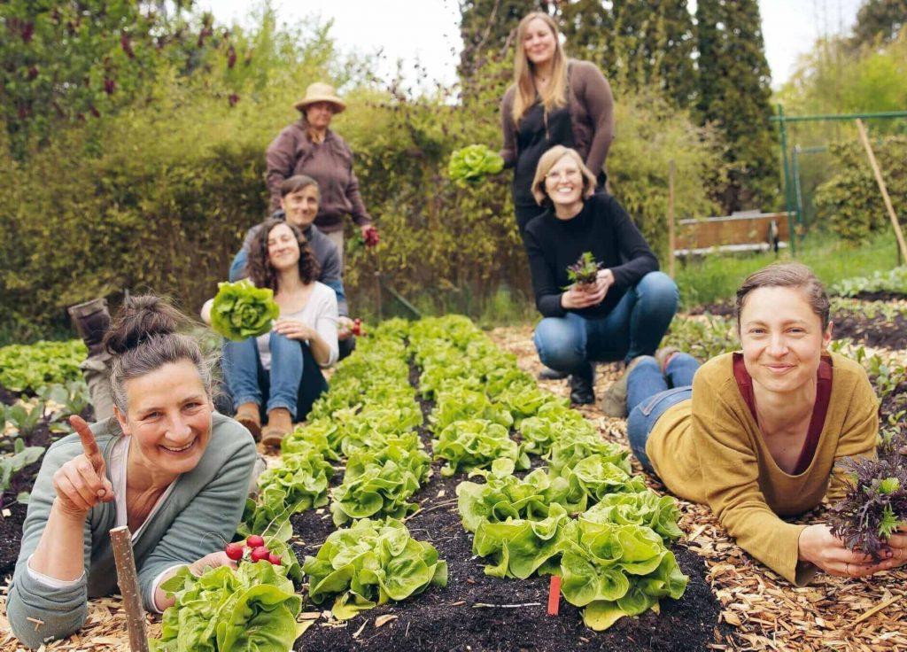 7 Menschen stehen oder liegen rund um einen Salatgarten, grüner Salat in der Mitte