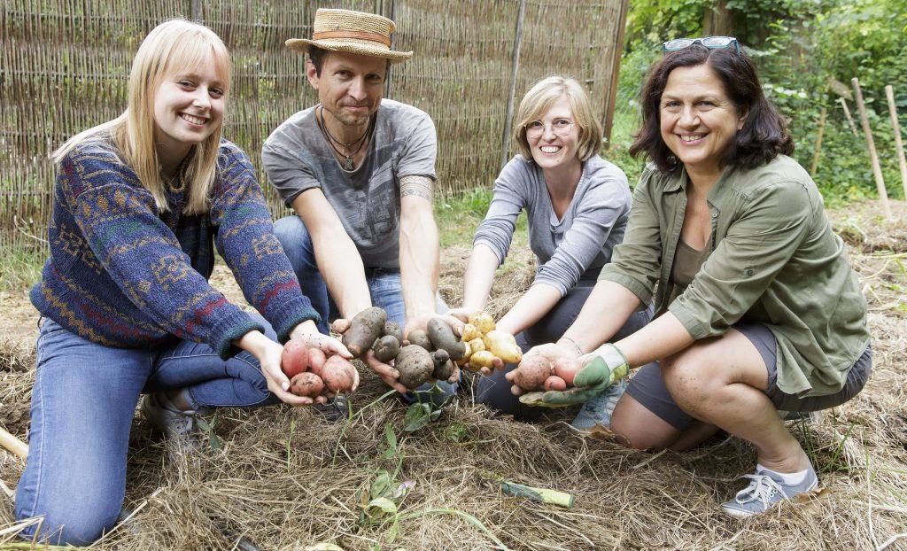 Drei Frauen und ein Mann halten bunte Kartoffeln in ihren Händen und knien auf dem Boden