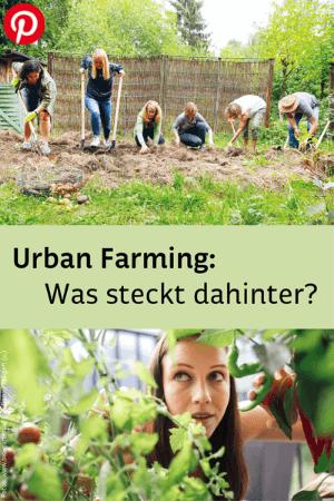 Menschen beim Gärtnern und Frau zwischen Gemüse am Balkon