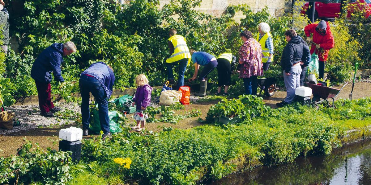 Eine Gruppe von Menschen beim Guerilla Gardening