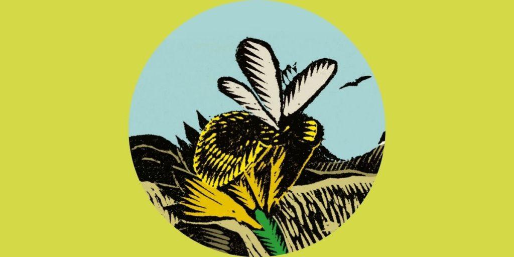 bunte Illustration von Biene auf grünem Hintergrund
