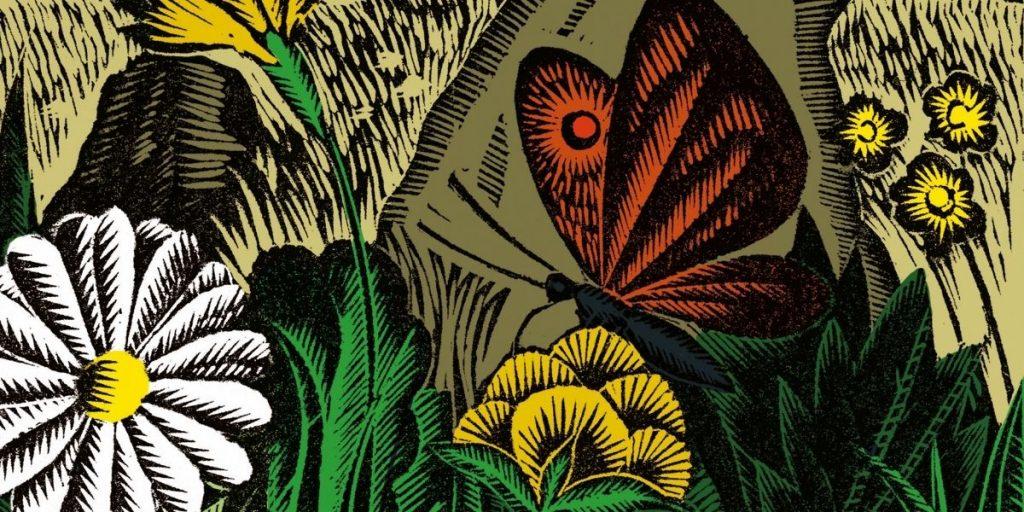 bunte Illustration von Schmetterling in Blumenwiese