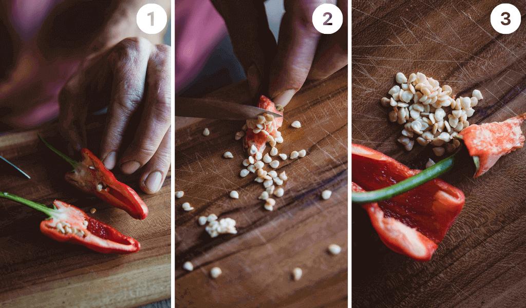 Schritt-für-Schritt-Anleitung Saatgutvermehrung Paprika