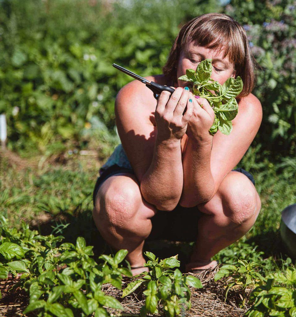 Frau riecht an geernteten Pflanze